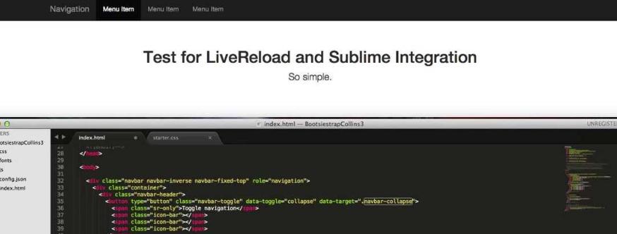 LiveReload plugin view